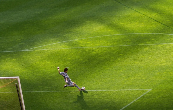 Picture field, football, goalkeeper