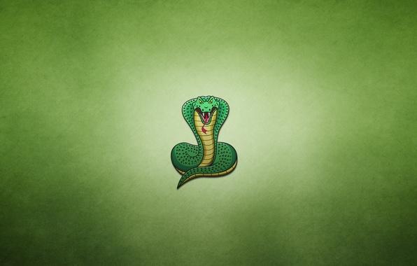 Picture snake, minimalism, Cobra, snake, cobra, greenish background, fat