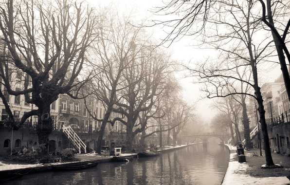 Picture winter, snow, trees, bridge, the city, river, photo, background, Wallpaper, street, white, building, home, black, …