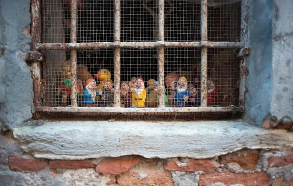 Picture Venice, Disney Seven, Random Window