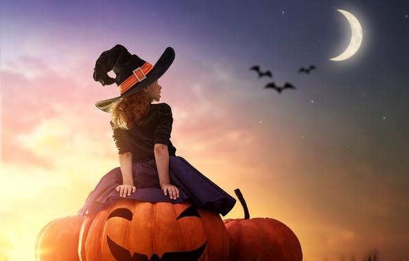 Picture sunset, night, the moon, girl, Halloween, pumpkin, girl, moon, Pumpkin, Halloween, hat, child