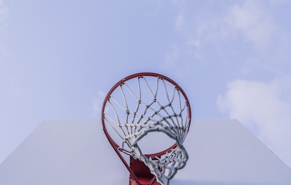 Picture mesh, ring, shield, basketball