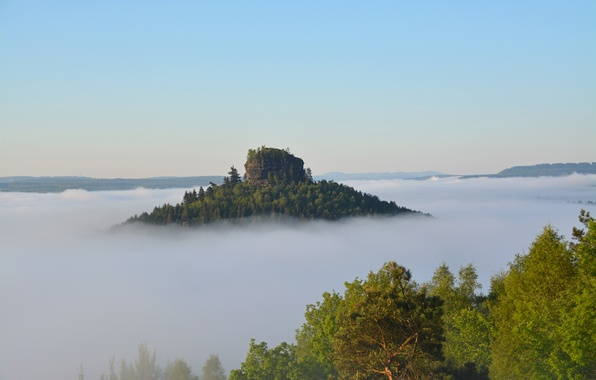 Picture the sky, trees, fog, rock, mountain, morning