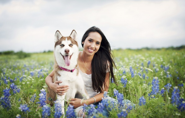 Picture girl, flowers, smile, hair, dog, girl, field of flowers, dog, flowers, hair, smiling, field of …