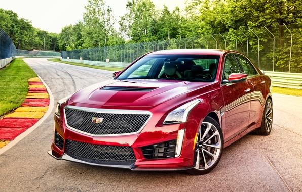 Picture Cadillac, CTS-V, Cadillac, 2015