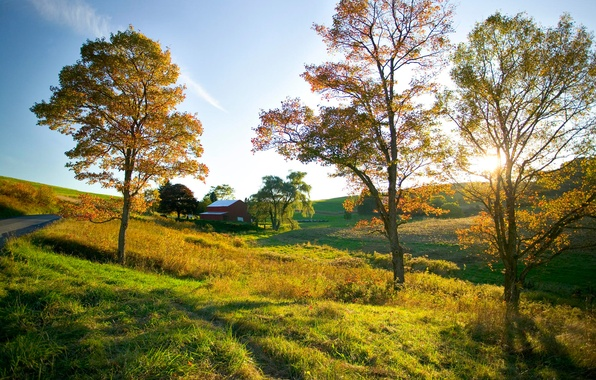 Picture road, field, autumn, the sky, tree, mood, space, house