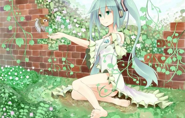 Picture girl, flowers, plants, anime, headphones, art, bird, vocaloid, hatsune miku, Vocaloid, kagamine09