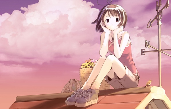 Picture roof, flowers, anime, girl, basket