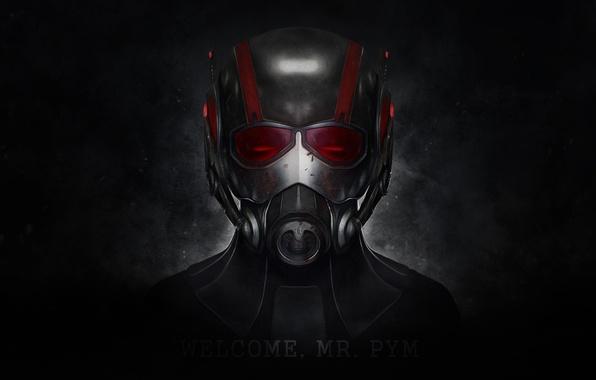 Picture text, the dark background, the film, the inscription, dark, helmet, Marvel, movie, Marvel, helm, Ant-man, …
