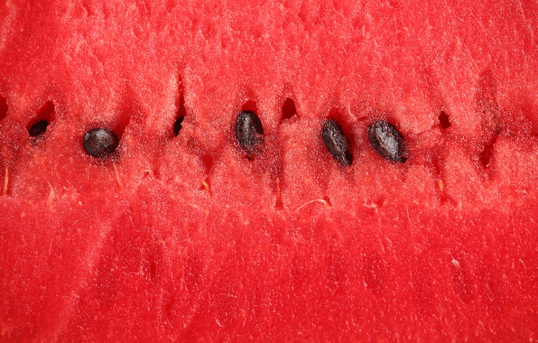 Picture macro, watermelon, the flesh, berry