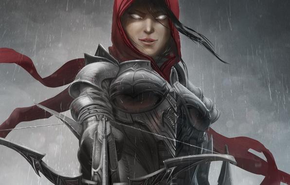 Picture girl, rain, art, hood, Diablo III, armor, crossbow, Demon Hunter, Reaper of Souls