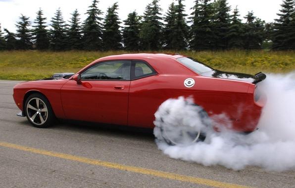 Picture asphalt, trees, smoke, dodge challenger