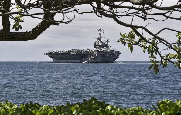 Picture sea, branches, tree, shore, ship, the carrier, view, American, military, USS John C. Stennis, US …