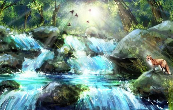 Picture rays, trees, birds, nature, stones, waterfall, art, Fox