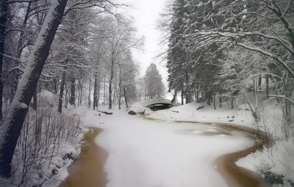 Picture winter, snow, trees, bridge, Park, river