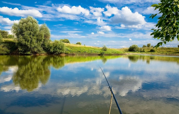 Picture fishing, rod, first person view