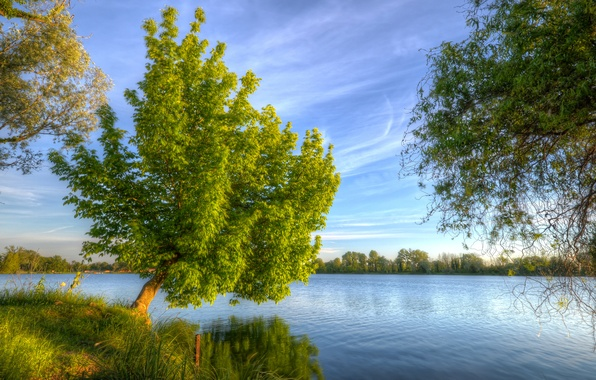 Picture the sky, grass, clouds, landscape, river, tree