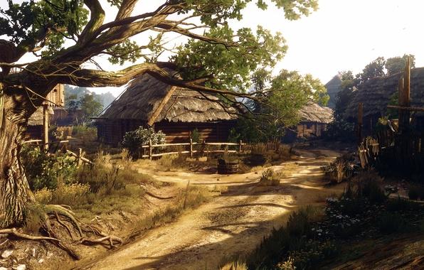 Picture village, Witcher-3, Little Village