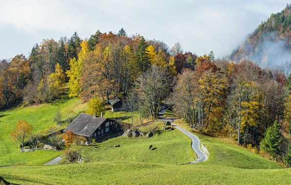 Picture road, greens, autumn, forest, grass, trees, mountains, fog, house, glade, Switzerland, meadow, Sunny, the view …