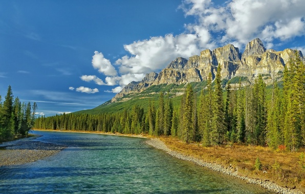 Picture forest, clouds, mountains, river, stones, spruce, Canada, coniferous