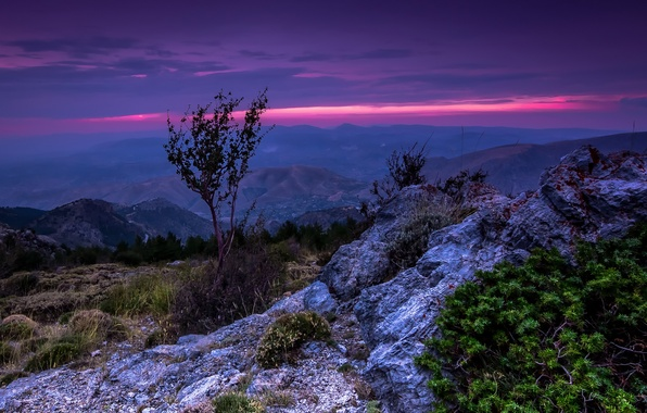 Picture the sky, trees, landscape, sunset, mountains, Spain, Sierra Nevada, Sierra Nevada