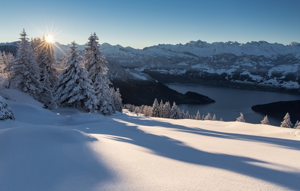 Picture winter, snow, trees, sunset, mountains, lake, Switzerland, ate, Alps, the snow, shadows, Alps, Lake Lucerne, …