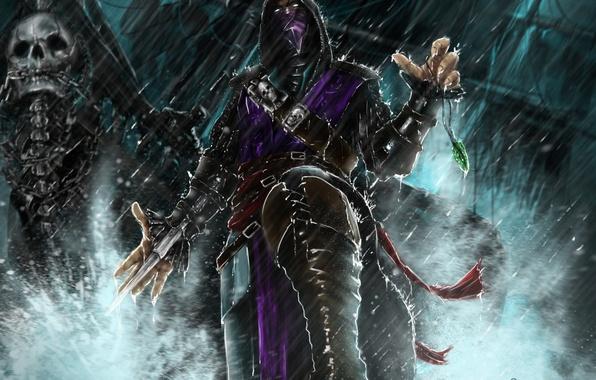 Picture look, weapons, the game, mask, art, hood, Mortal Kombat, Rain, character