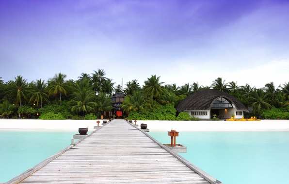 Picture sand, beach, trees, bridge, nature, palm trees, the ocean, house, The Maldives, the hotel, Bungalow, …