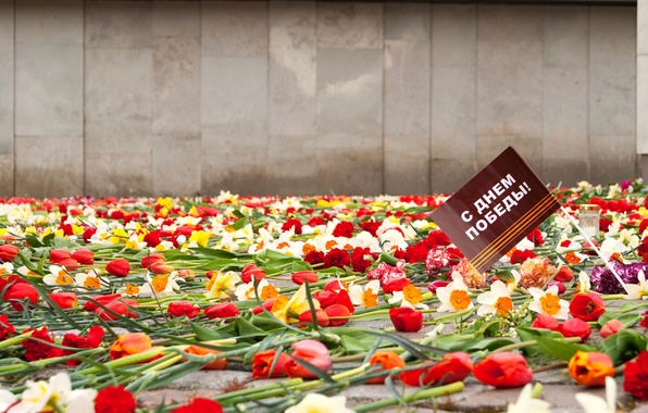 Picture flowers, memory, holiday, May 9, Victory day, eternal