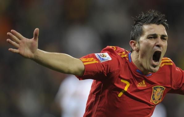 Picture football, victory, 2010, Spain, South Africa, goal, Barcelona, victory, Barcelona, the celebration, la Furia Roja, ...