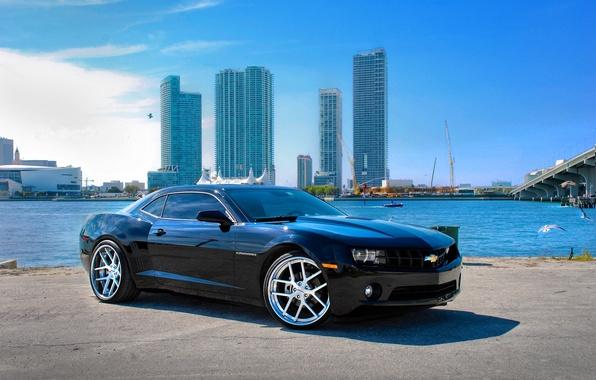 Picture sea, the sky, clouds, Chevrolet, black, chevrolet, promenade, skyscrapers, florida, camaro ss, miami, Camaro SS