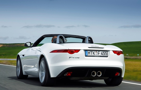 Picture car, machine, the sky, Jaguar, white, rear view, 2013, F-Type