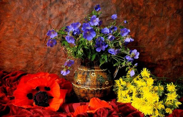 Picture dandelion, Mac, petals, vase, pitcher, still life