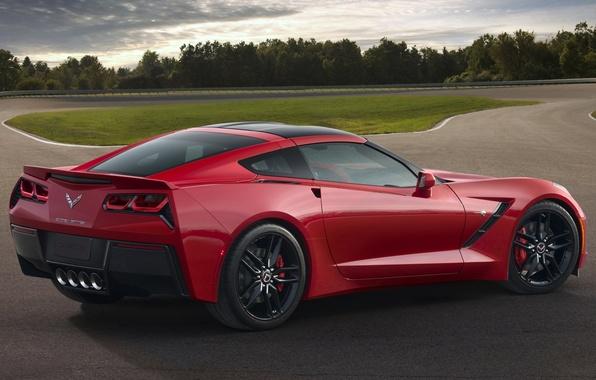 Picture Corvette, Chevrolet, Chevrolet, rear view, Stingray, Corvette, Stingray