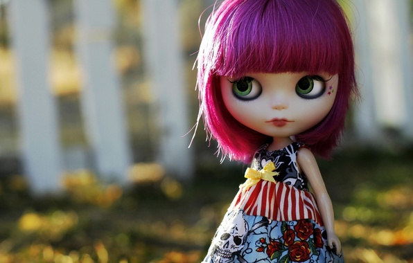Picture eyes, hair, skull, roses, doll, dress, purple