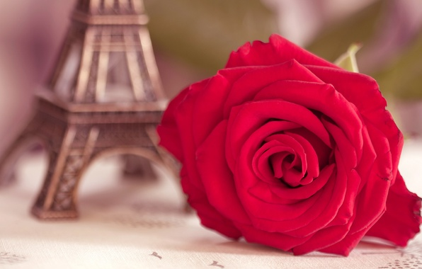 Picture flower, macro, Eiffel tower, rose, blur, figurine, scarlet