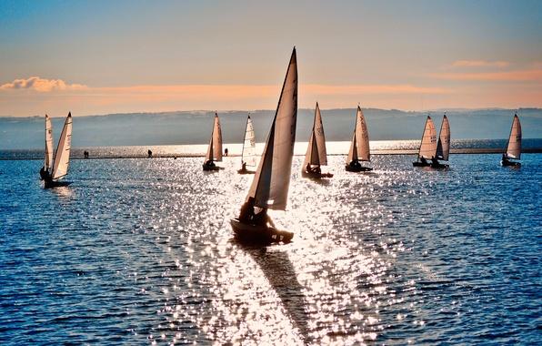 Picture sea, sport, Shine, boats, sailboats