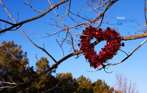 Picture love, holiday, romance, heart, love, Valentine's day