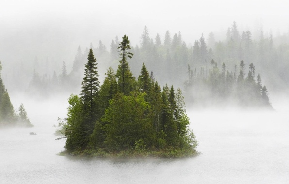 Picture forest, nature, fog, river, Canada, fog on fentol lake
