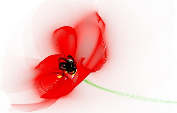 Picture flower, line, Wallpaper, Mac, petals, stem