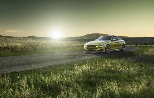 Picture road, grass, yellow, bmw, BMW, roadside, yellow, f82