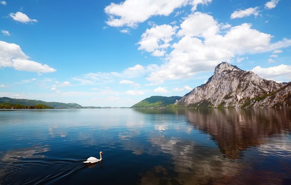 Picture Mountains, Swan, River