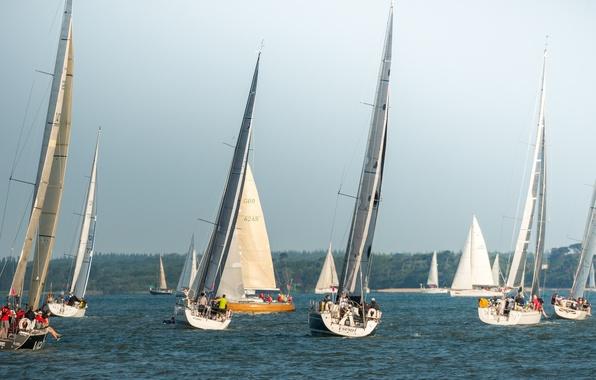Picture sea, the sky, race, boat, yacht, sail, regatta