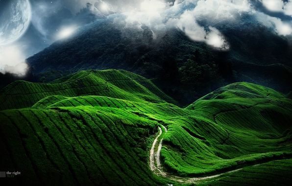 Picture road, green, hills, planet