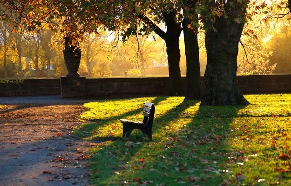 Picture autumn, bench, Park, the evening