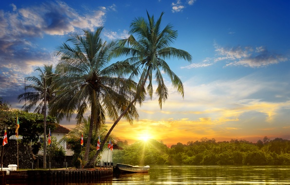 Picture forest, the sky, the sun, clouds, rays, sunset, tropics, river, palm trees, shore, boat, pier