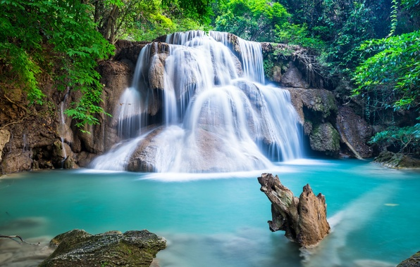Picture forest, river, waterfall, forest, river, landscape, waterfall, emerald