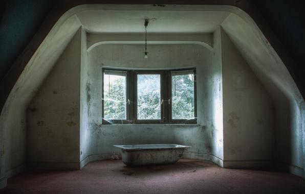 Picture light bulb, room, web, doll, window, bath, abandonment, attic
