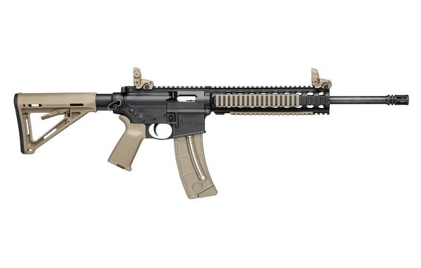 Picture Carbine, .22, SMITH WESSON-MP15-22