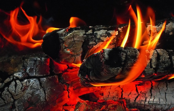 Picture ash, fire, wood, coal, fireplace, the fire, flame